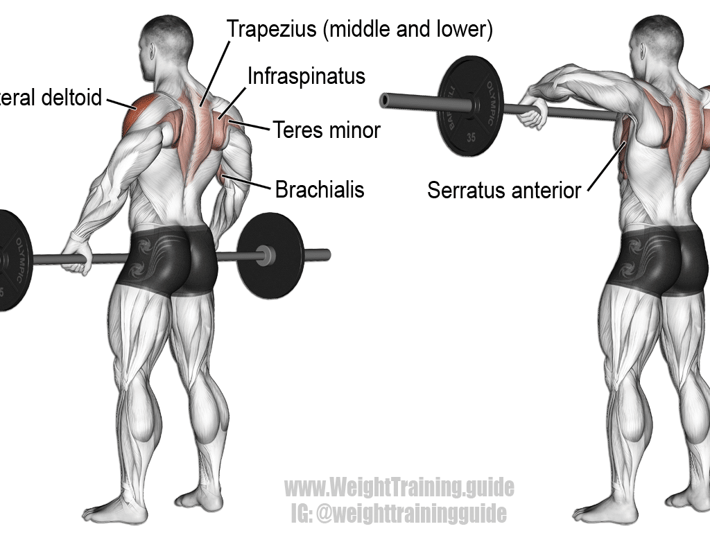 Barbell-Wide-Grip-Upright-Row