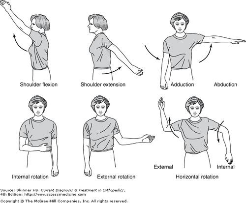 Các chuyển động cơ vai