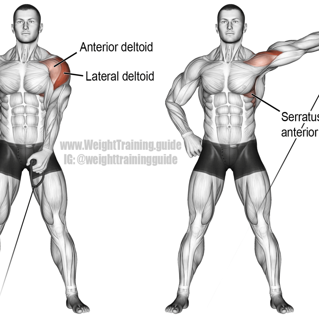 cable-one-arm-lateral-raise