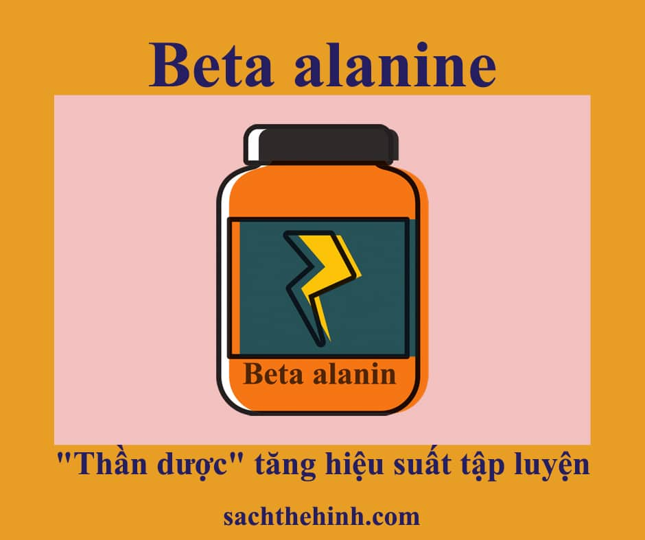 """Beta alanine là gì? """"thần dược"""" tăng hiệu suất tập luyện"""