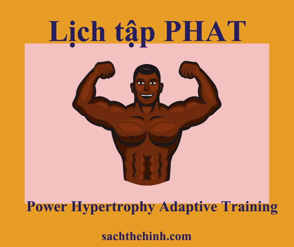 Lịch tập gym PHAT(Power Hypertrophy Adaptive Training)