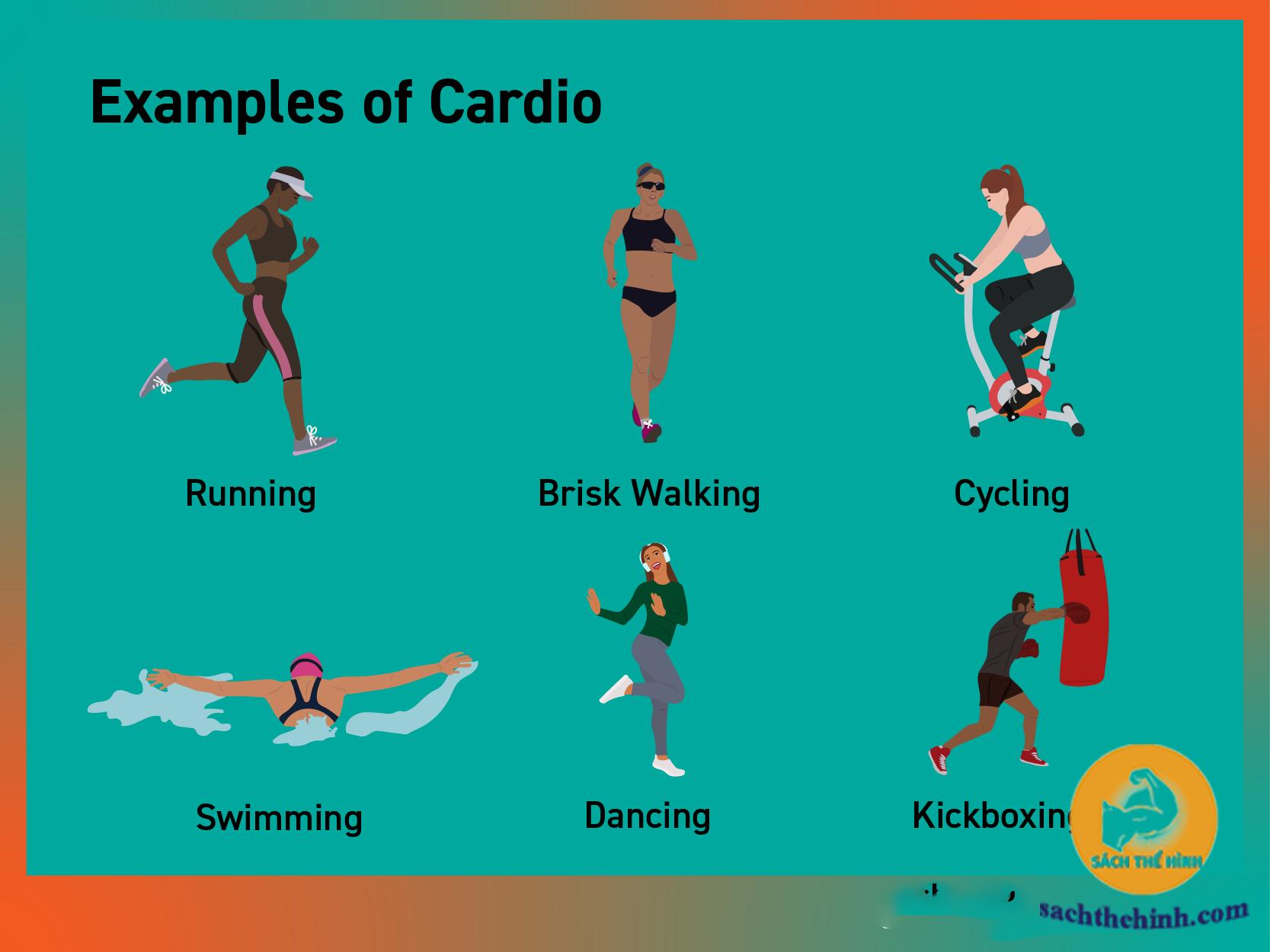 các bài tập cardio